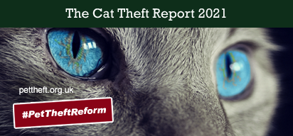 2019 Cat Theft Report UK